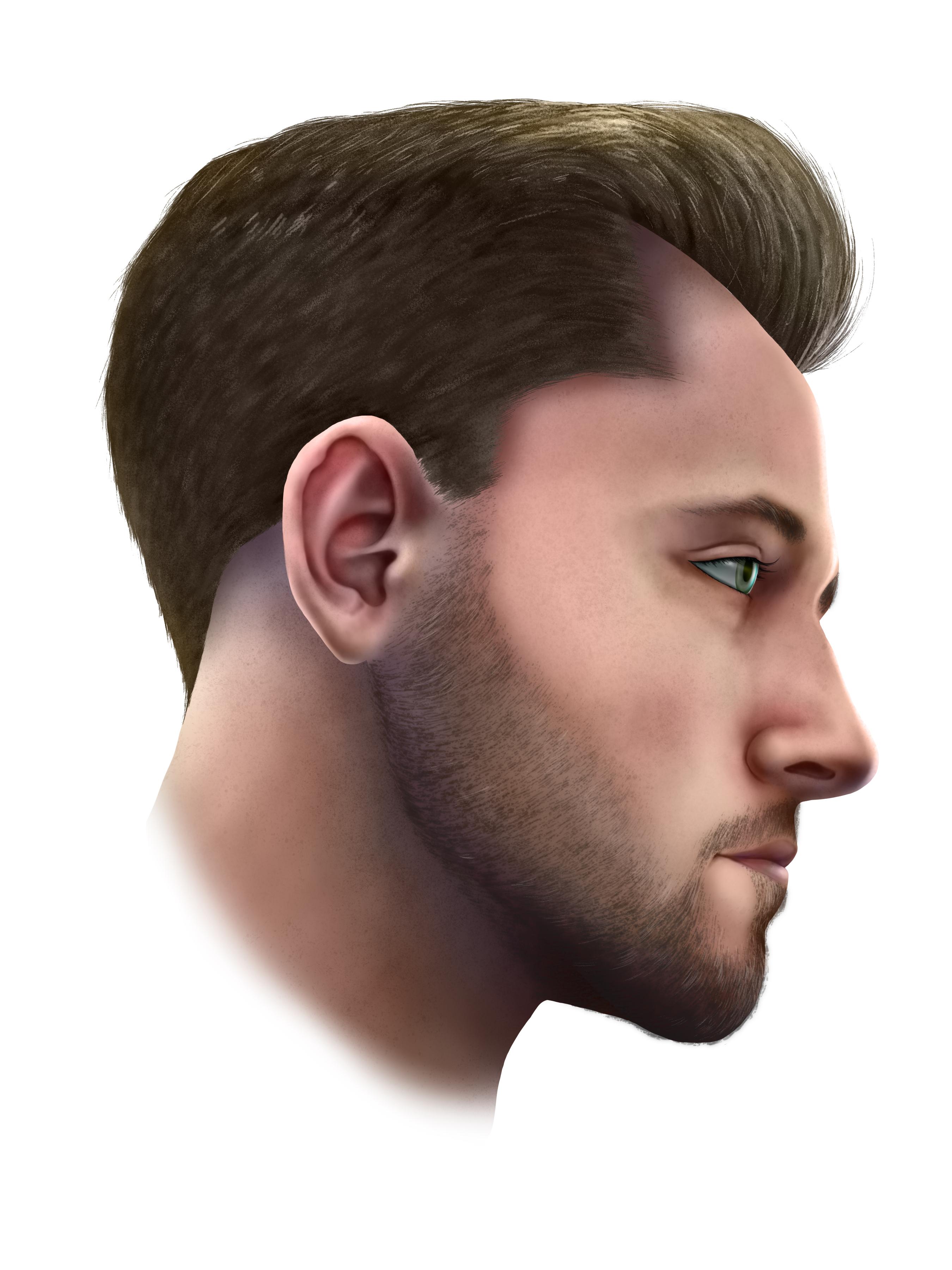 Facial Nerve3